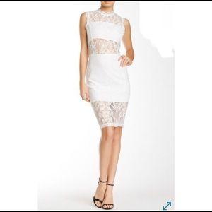 Endless Rose Dress - NWT!!